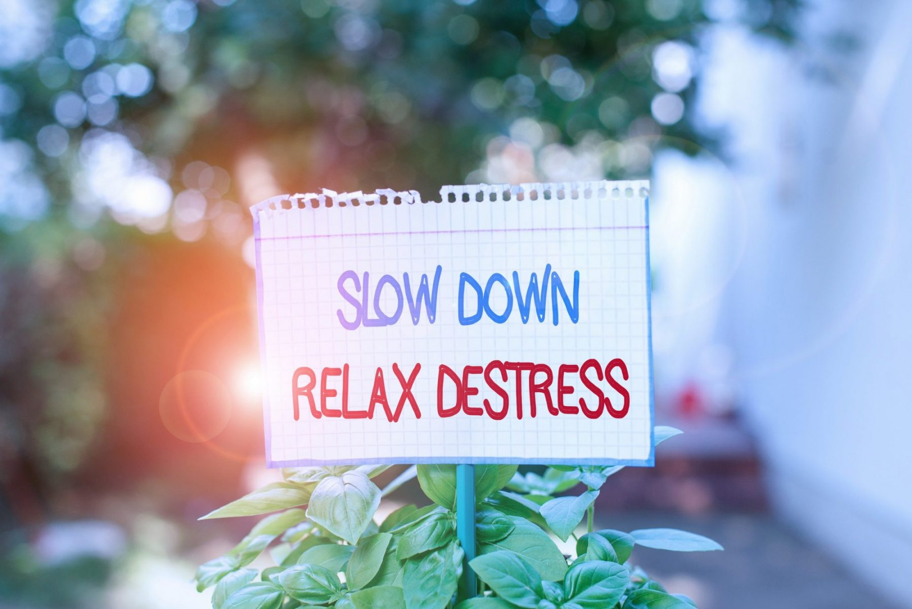 Reduce Stress in Dallas Fort Worth